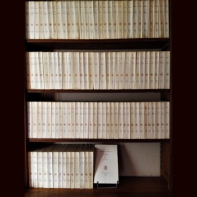 Voltaire's correspondence édited by Besterman
